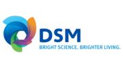 DSM Japan K.K secondment; 日本特殊コーティング株式会社